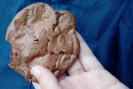 Thumbnail for Cookie 2.jpg