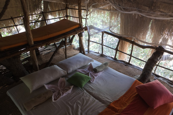 Bed At Tree House